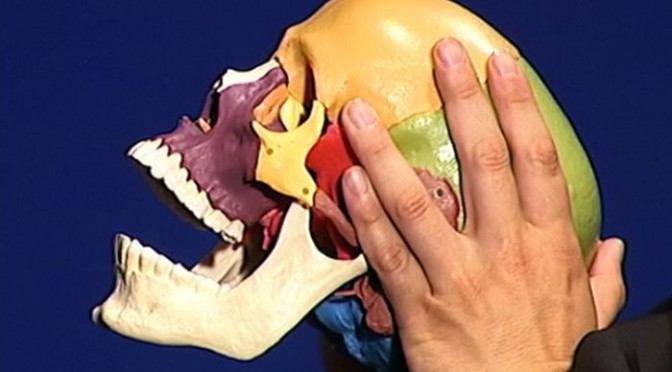 Kraniosakrale Technik Osteopathie