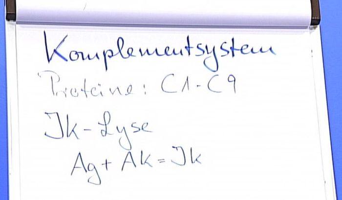 Proteine Albumine